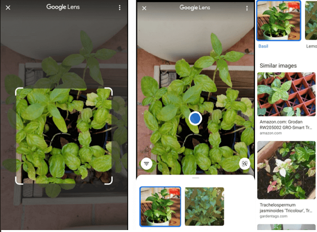 Google lens integrated into the camera app for most Android phones